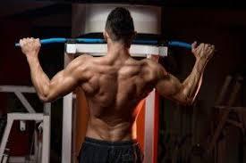 Musculin active - Polska - efekty - Działanie