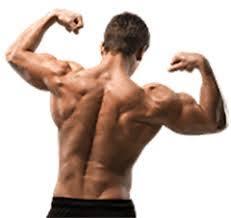 Musculin active - jak stosować - ceneo  - allegro