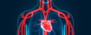 Cardiol - na nadciśnienie - jak stosować - apteka - producent