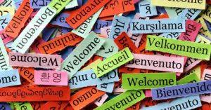 Alpha Lingmind - Uczenie się obcych języków - forum - opinie - czy warto