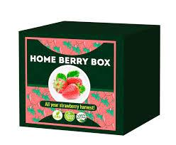 Home Berry Box - ceneo - działanie - jak stosować