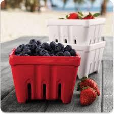 Home Berry Box - do odchudzania - gdzie kupić - Polska - producent