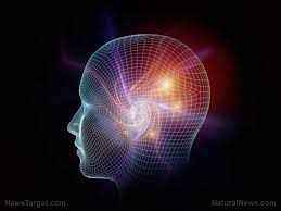 Neurocyclin – efekty – czy warto – działanie