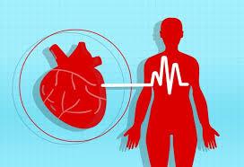 Cardio NRJ - prawidłowa praca serca – allegro – cena – ceneo