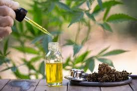 Cannabis Oil - lepsze samopoczucie - apteka – gdzie kupić – czy warto