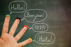 Ling Fluent – działanie – forum – gdzie kupić